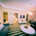 hotel-aleksandar-rafailovici12