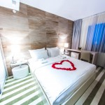 hotel-aleksandar-rafailovici13