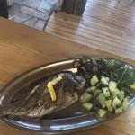 restaurant-barakuda-ada-bojana-15