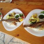 restaurant-barakuda-ada-bojana-19