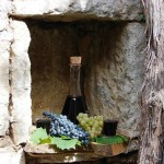 vinarija-kopitovic7