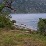 land-for-sale-stoliv-kotor-2