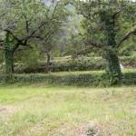 land-for-sale-stoliv-kotor-4