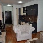 apartments-for-rent-rafailovici2-5